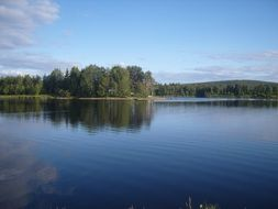 forest lake in Finland