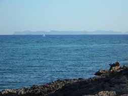 white sailboat in the sea in majorca