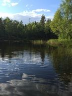 panorama of summer forest lake in norway