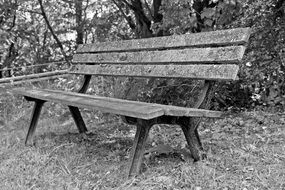 Black and white photo of a wooden park bench