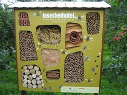 insects hotel outdoors