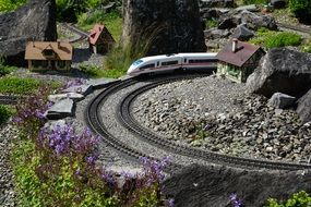 miniature railway and a train