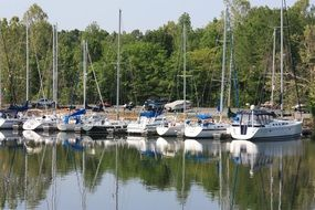 mooring of sailing boats