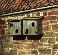 wooden birds box on wall