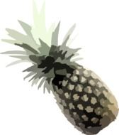 pineapple drawed