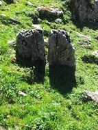 Boulders on the meadow