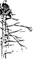 black and white drawing of a dead tree