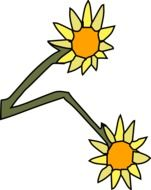 children's drawing of a sunflower