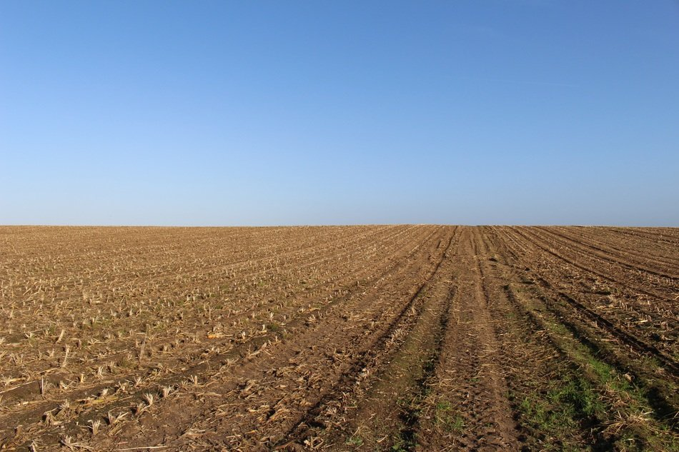 rural plowed field