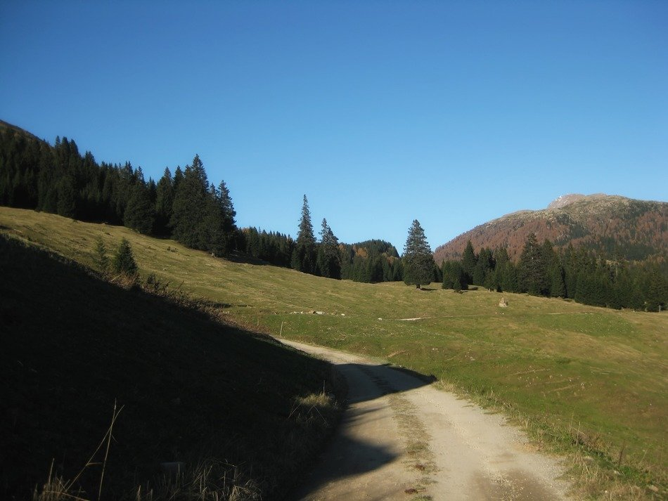 Road to the Valley in the scenic mountains of Bavaria