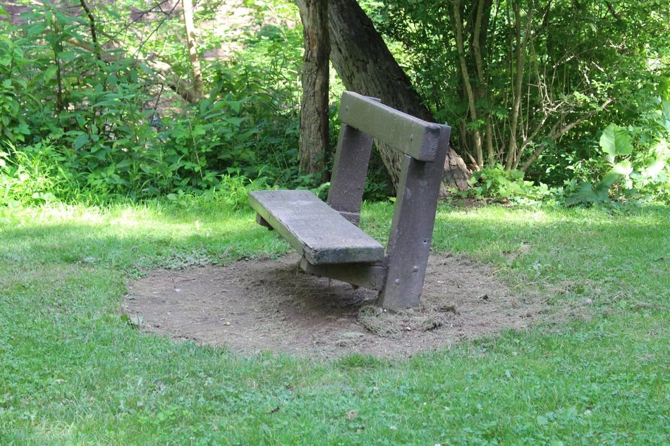 park bench wooden