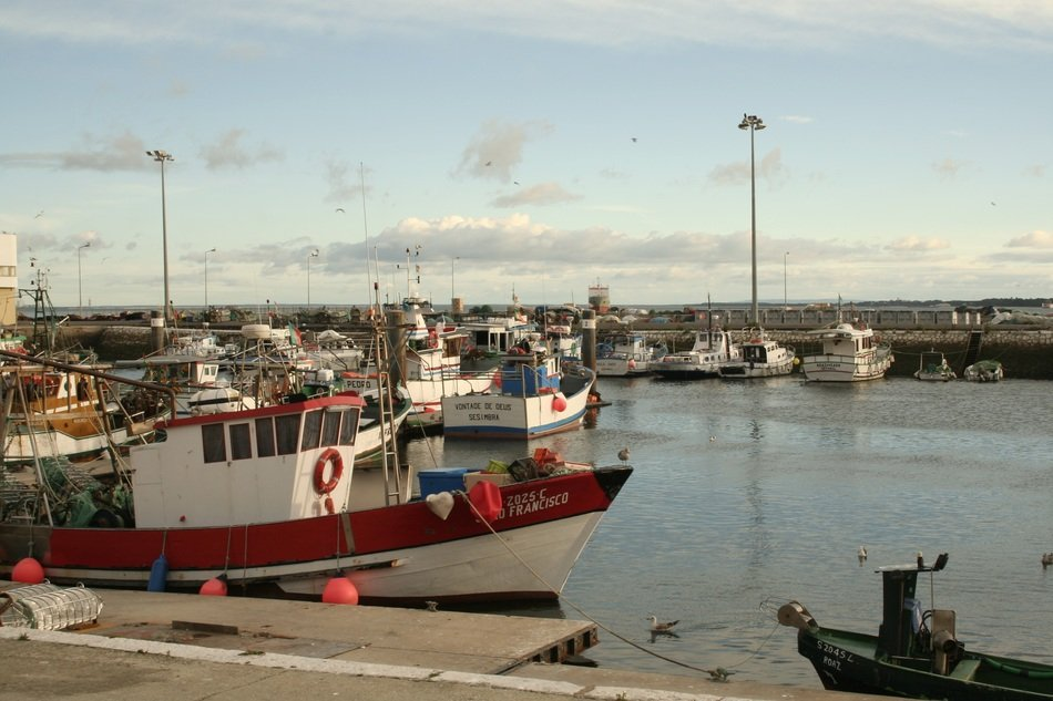 boats and fishing boats at the pier