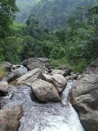 streem among rocks in green mountains, nepal, annapurna