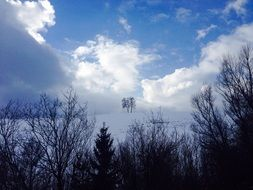 thick white clouds over trees