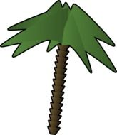 green palm tree as a graphic image