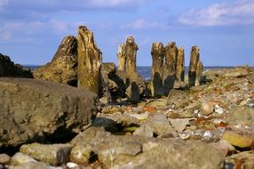 Baltic coast at low tide