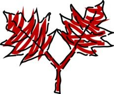 drawing of red leaves