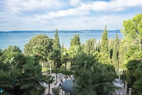 tropical trees on Lake Garda