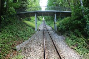pedestrian bridge over railroad tracks in the forest