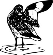 Black and white drawing of a bird in the water