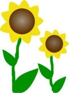 graphic image of two sunflowers