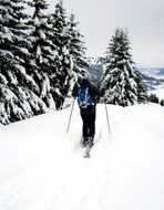 Snowshoeing on the mountains in winter
