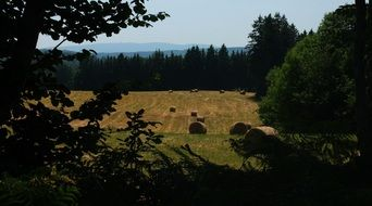 hay bales on a field in france
