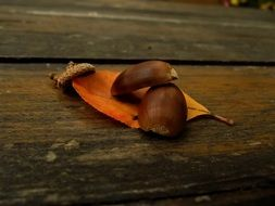 Leaf and acorns on a wooden surface