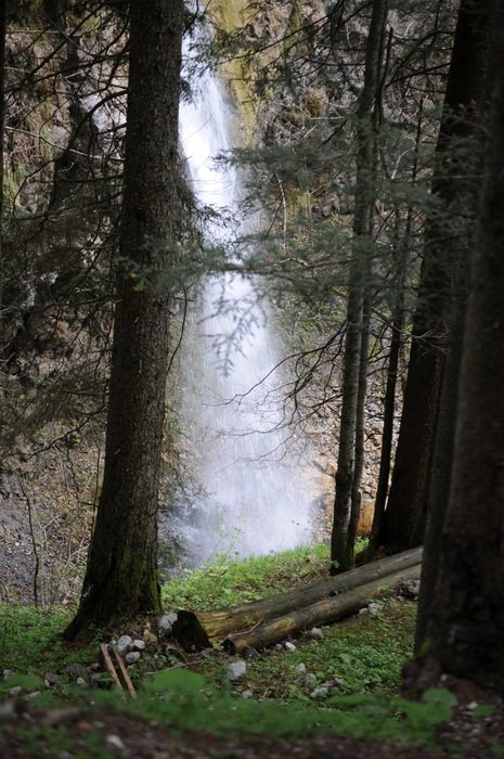waterfall on a mountain behind forest trees