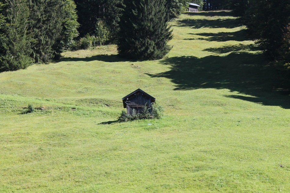 grey wooden cabin on green meadow at forest