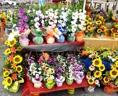 variety of flowers in a market stall