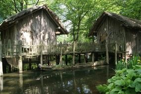 stilt houses in a forest