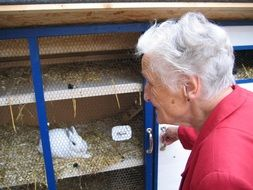 old woman caring for a rabbit