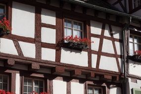 timber framing with flower boxes