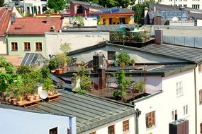 terrace with a garden on the roof