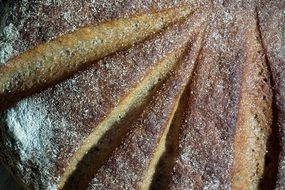 Baking delicious rye bread