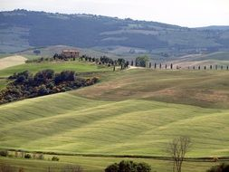 green hill in tuscany