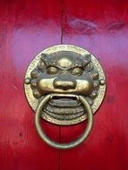 lion head with ring, doorknocker at wooden door