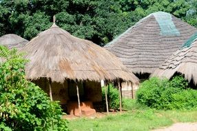 thatched huts in a village in Guinea