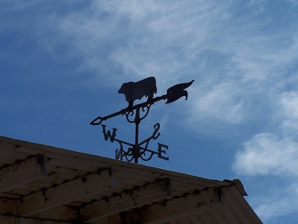 weather vane on a roof