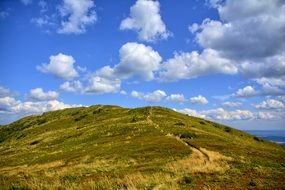 green hill under the blue sky