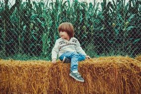 boy sitting on hay