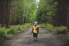 Child on the path among the forest