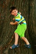 boy tree play child