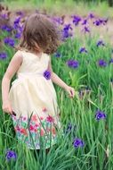 little girl on the field of summer flowers