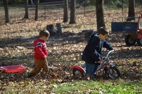boys playing in autumn leaves