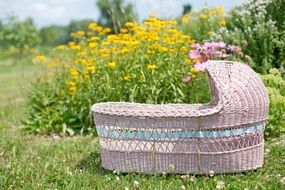 pink bassinet in the garden