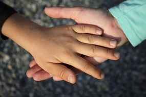 child's hand in adult's hand