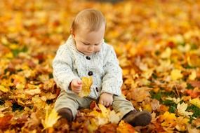 baby playing in the autumn leaves