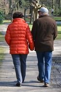 senior couple walking holding hands, back view